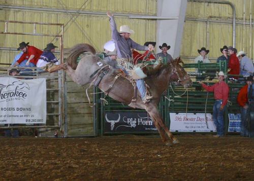 Saddle Bronc Champion Shane Hand on #8 of Big Horn Rodeo