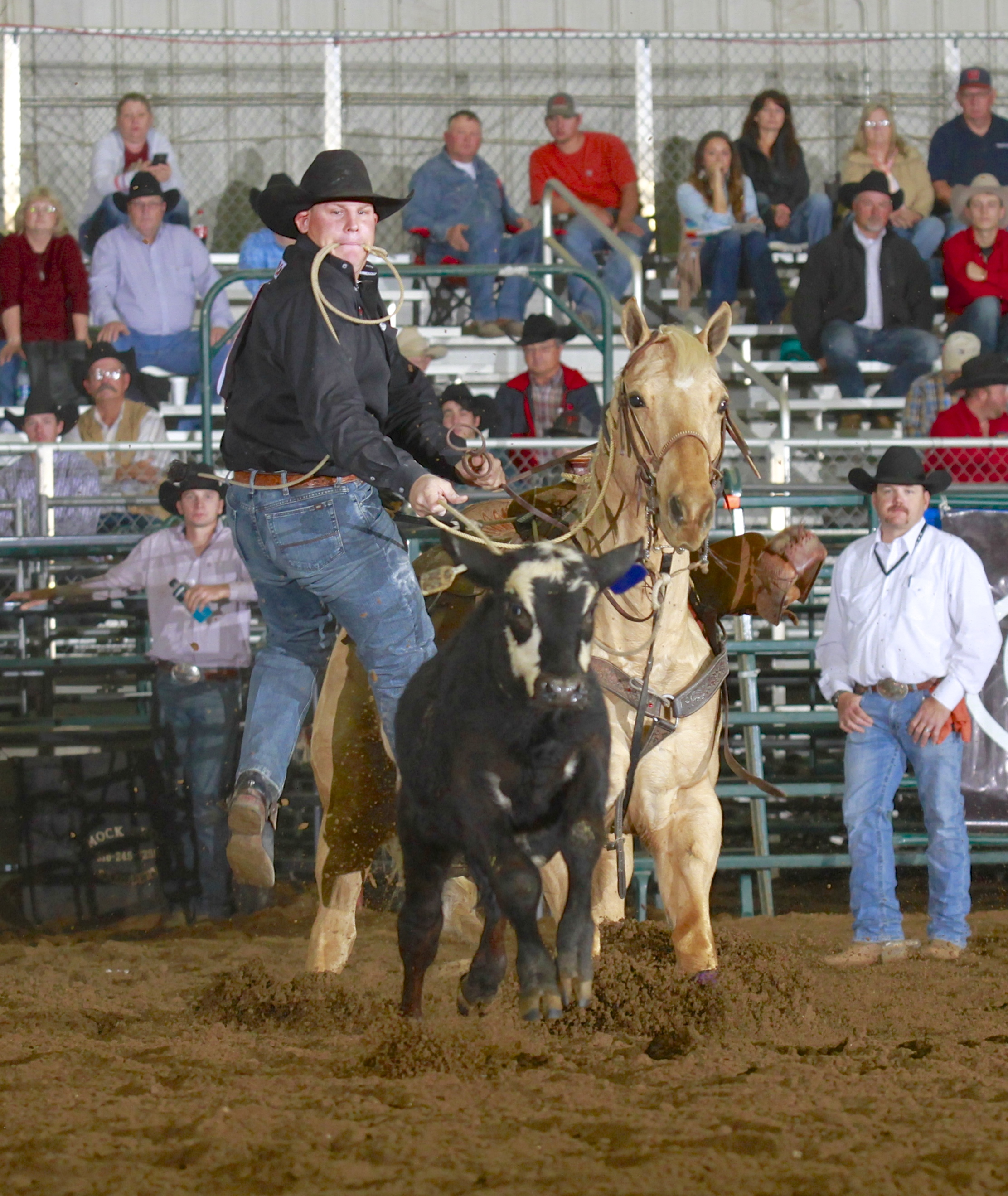 2017 Champion Tie Down Roper - Ethan Hill